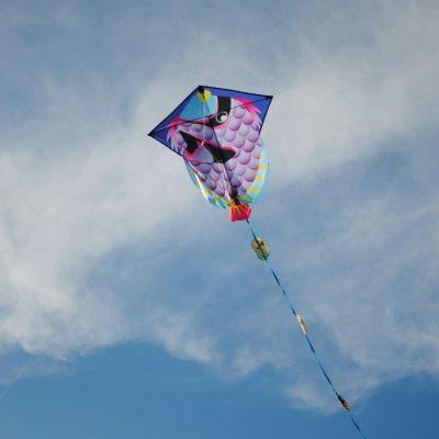 Play_kite