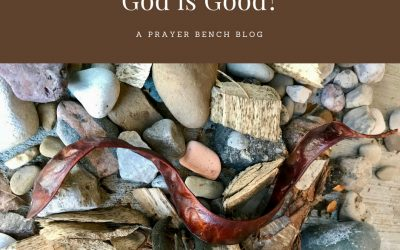 [Nahum] God is Good?
